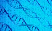 Demain, de l'ADN pour stocker nos données ?