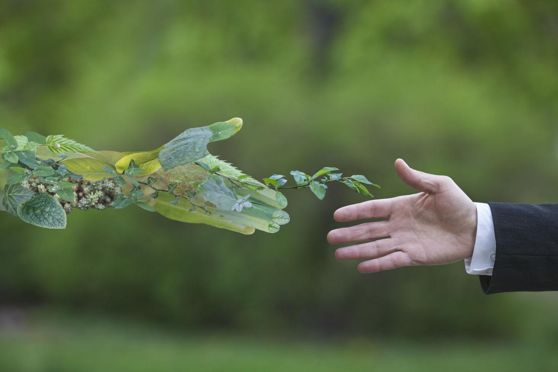 The Green Deal, ou quand le e-commerce se met au vert... | Comarketing-News